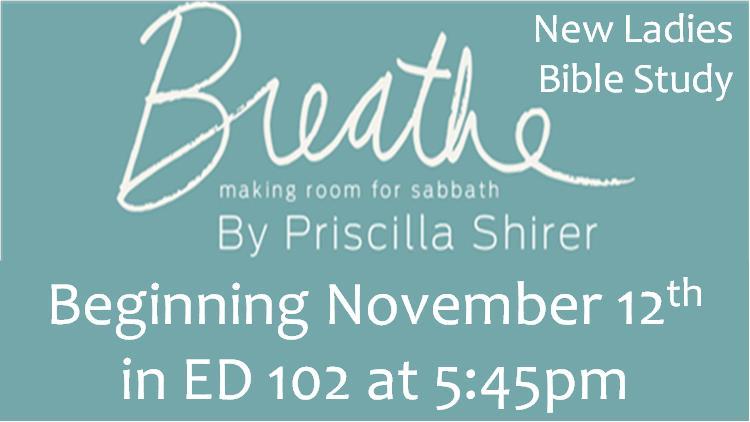 BreatheBibleStudy